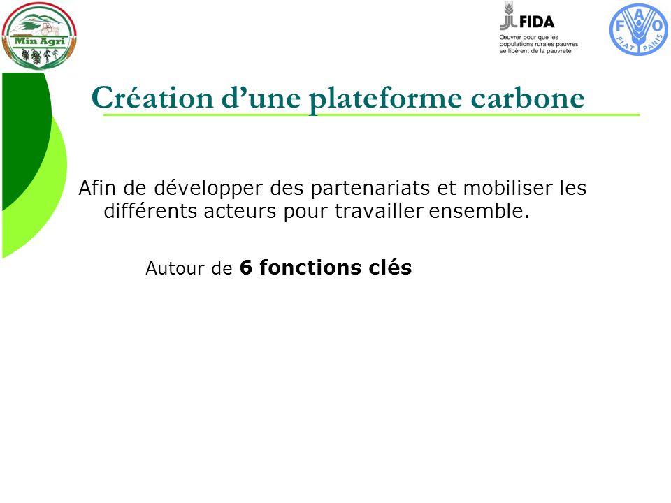 Création dune plateforme carbone Afin de développer des partenariats et mobiliser les différents acteurs pour travailler ensemble.
