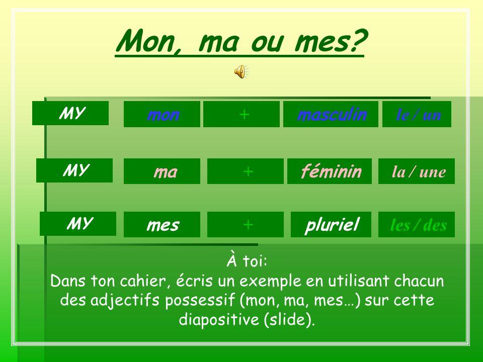 Mon, ma ou mes? masculin féminin pluriel mon + ma + mes le / un MY + la / une les / des À toi: Dans ton cahier, écris un exemple en utilisant chacun d