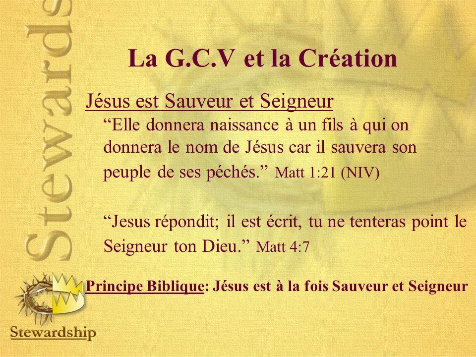 Jésus est Sauveur et Seigneur Elle donnera naissance à un fils à qui on donnera le nom de Jésus car il sauvera son peuple de ses péchés.