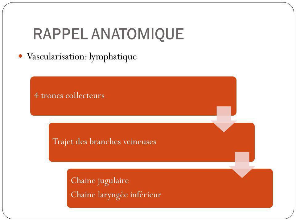 RAPPEL ANATOMIQUE Vascularisation: lymphatique 4 troncs collecteursTrajet des branches veineuses Chaine jugulaire Chaine laryngée inférieur
