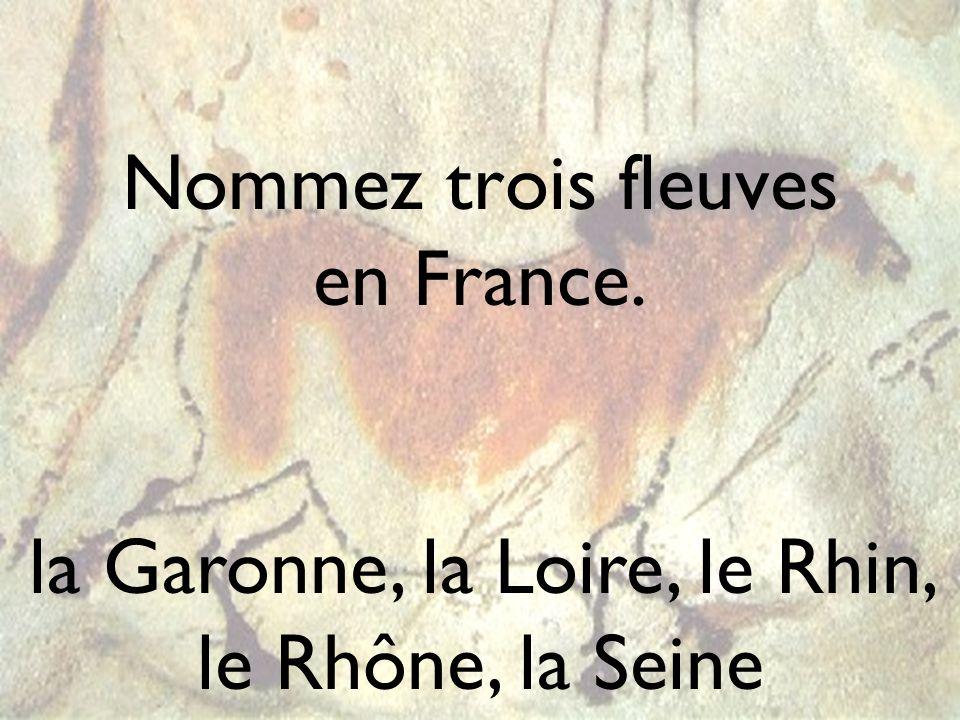 Nommez trois fleuves en France. la Garonne, la Loire, le Rhin, le Rhône, la Seine
