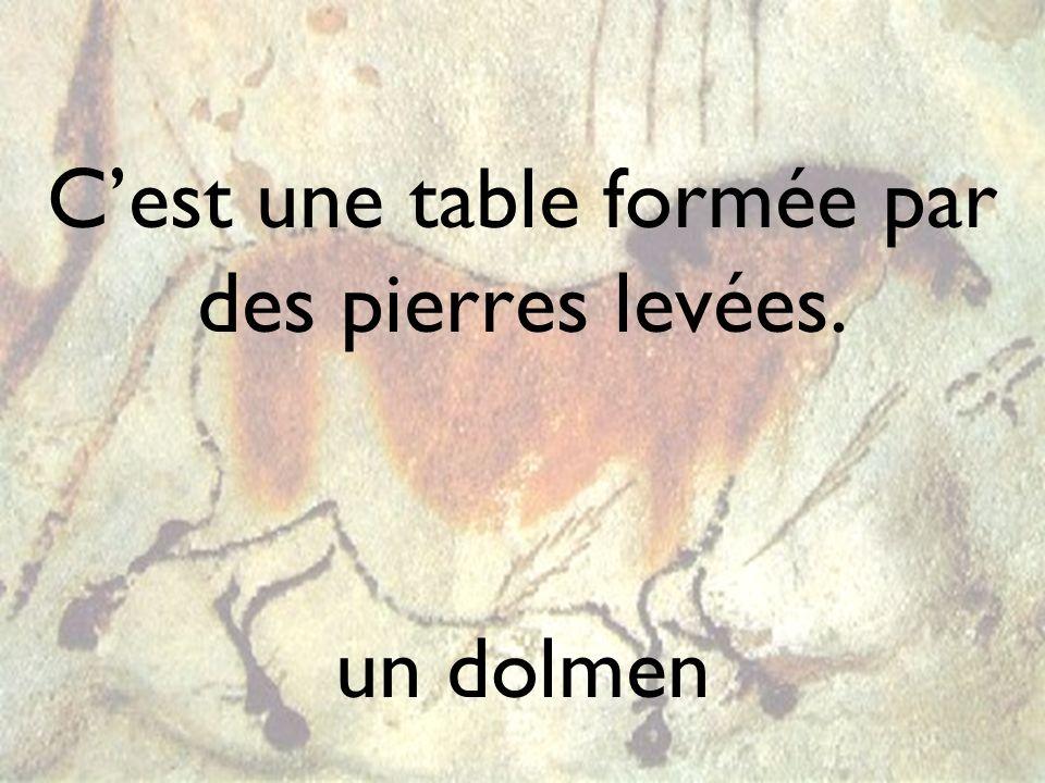 Cest une table formée par des pierres levées. un dolmen