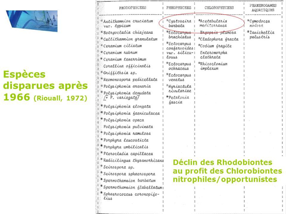 Suivi des macrophytes 1990-2010 Côte : 0 Large : 100m Présence/Absence Recouvrement 0 à 5 5m² par transect : Fréquence 0 à 20 Indice quantitatif dAbondance Moyen 0 à 500 Ulva Enteromorpha Cladophora Gracilaria Polysiphonia Callithamnion Zostera Potamogeton Ruppia