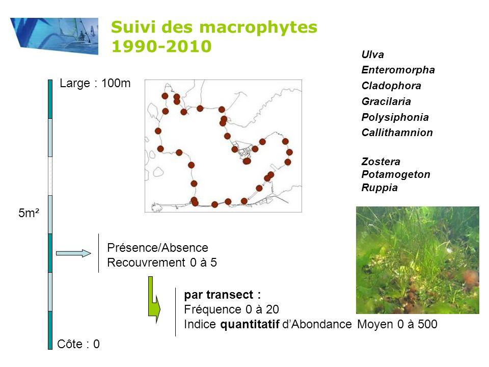 herbiers surface couverte + ph é nologie 2005-2010 Campagne annuelle Traitement SIG Suivi des herbiers