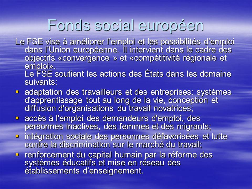 Fonds social européen Le FSE vise à améliorer lemploi et les possibilités demploi dans lUnion européenne.