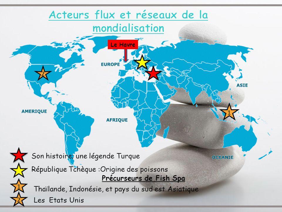 Précurseurs de Fish Spa Le Havre Les Etats Unis République Tchèque :Origine des poissons Son histoire; une légende Turque Thaïlande, Indonésie, et pay