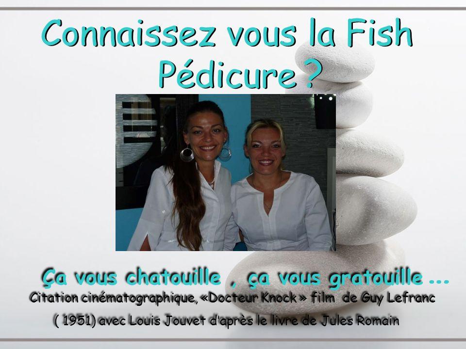 Toute la classe de bac Professionnel du CFA Du Havre tient à remercier : - Tout dabord Melles Brachtendorf pour leur coopération -Les professeurs pour leur collaboration -Lassistante éducative (Virginie Aubry) pour linitiative du projet