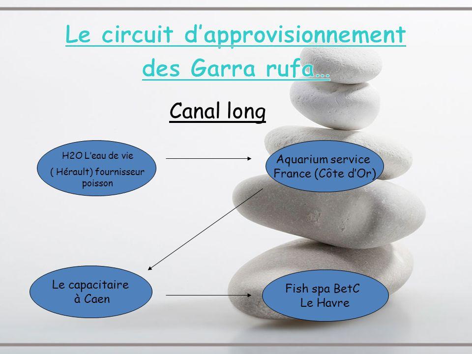 Le capacitaire à Caen Fish spa BetC Le Havre Aquarium service France (Côte dOr) H2O Leau de vie ( Hérault) fournisseur poisson Canal long