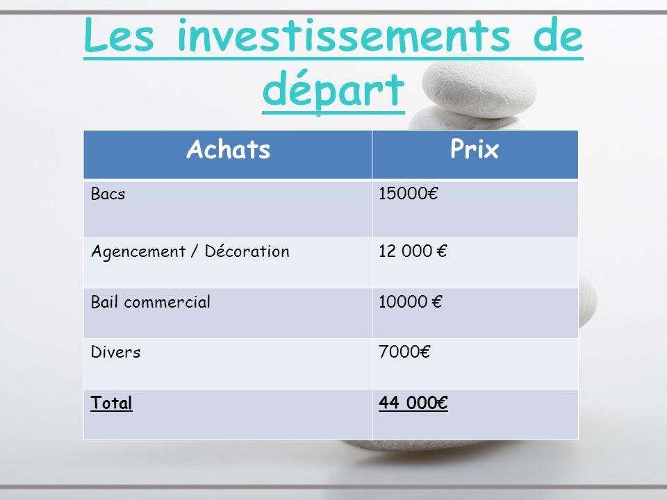 AchatsPrix Bacs15000 Agencement / Décoration12 000 Bail commercial10000 Divers7000 Total44 000