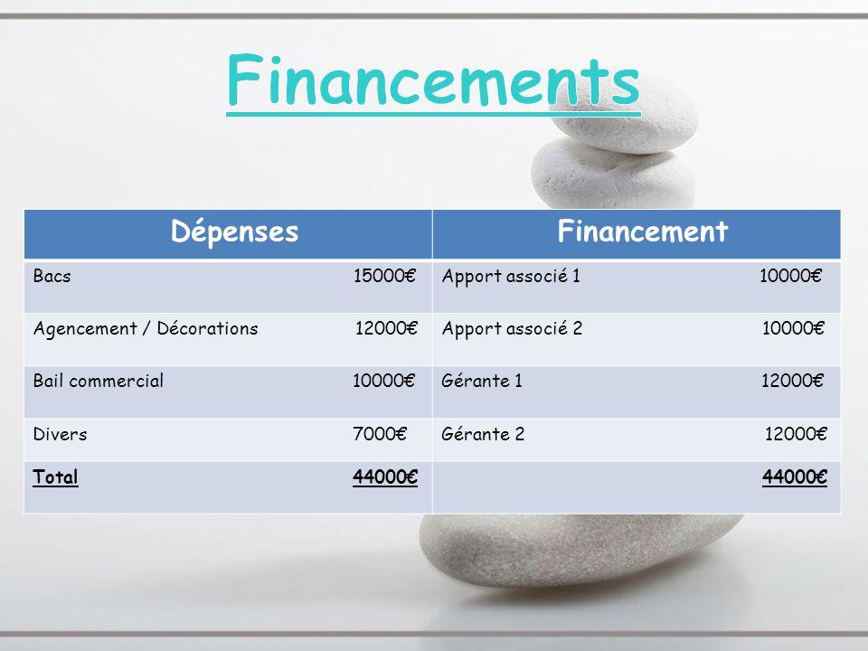 Dépenses Financement Bacs 15000Apport associé 1 10000 Agencement / Décorations 12000Apport associé 2 10000 Bail commercial 10000Gérante 1 12000 Divers
