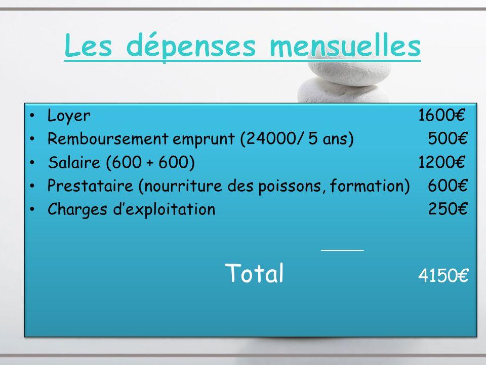 Loyer1600 Remboursement emprunt (24000/ 5 ans) 500 Salaire (600 + 600)1200 Prestataire (nourriture des poissons, formation) 600 Charges dexploitation