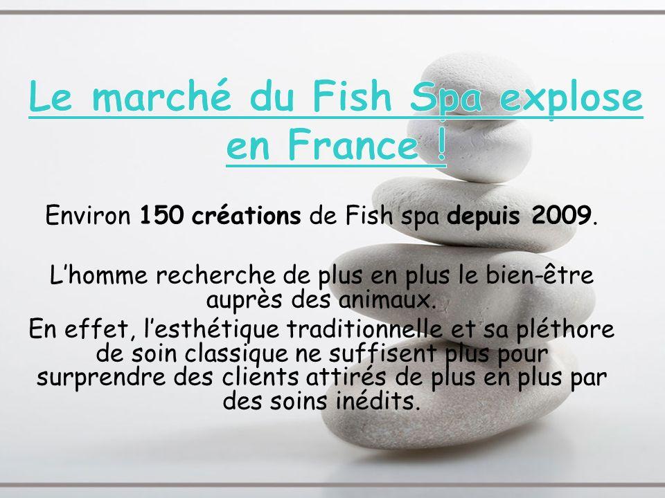 Environ 150 créations de Fish spa depuis 2009. Lhomme recherche de plus en plus le bien-être auprès des animaux. En effet, lesthétique traditionnelle