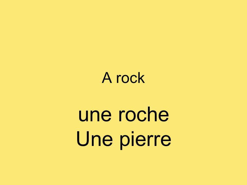 A rock une roche Une pierre