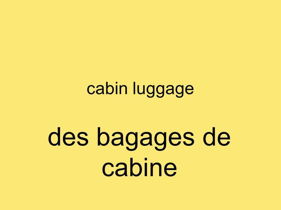 cabin luggage des bagages de cabine