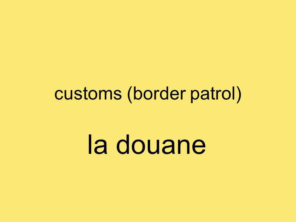 customs (border patrol) la douane