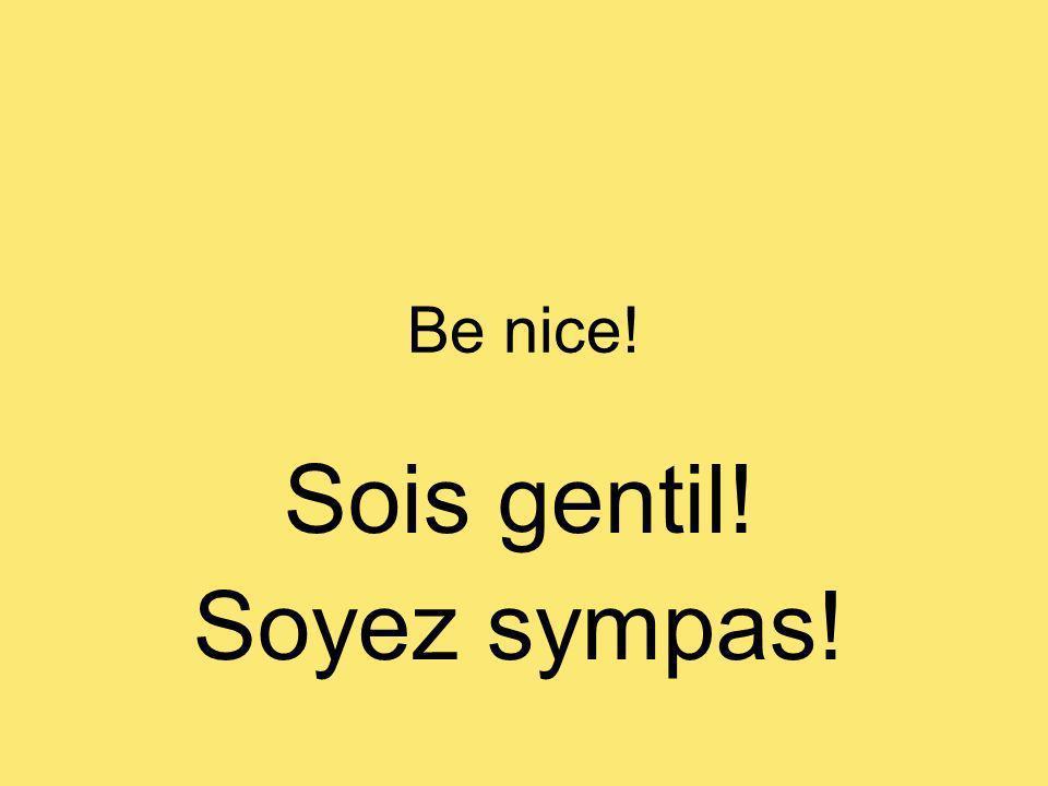 Be nice! Sois gentil! Soyez sympas!
