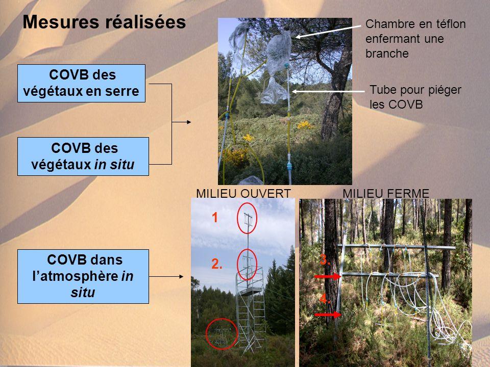 Mesures réalisées COVB des végétaux en serre COVB des végétaux in situ COVB dans latmosphère in situ 1 2. 3. 4. Chambre en téflon enfermant une branch