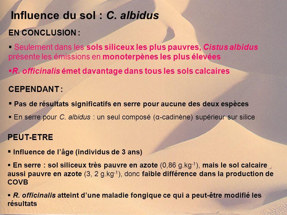 EN CONCLUSION : Seulement dans les sols siliceux les plus pauvres, Cistus albidus présente les émissions en monoterpènes les plus élevées R. officinal