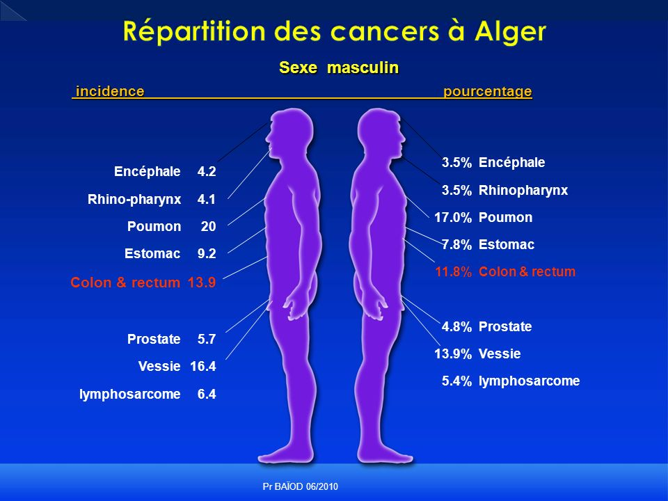Sexe masculin incidencepourcentage incidencepourcentage Encéphale Rhino-pharynx Poumon Estomac Colon & rectum Prostate Vessie lymphosarcome 4.2 4.1 20