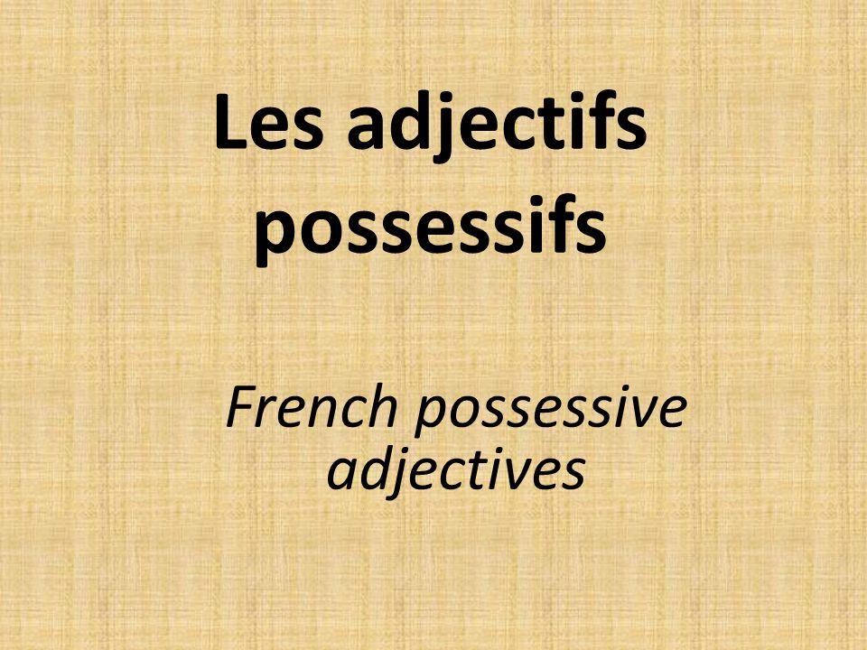 Les adjectif possessifs On utilise les adjectifs possessifs pour indiquer la possession.