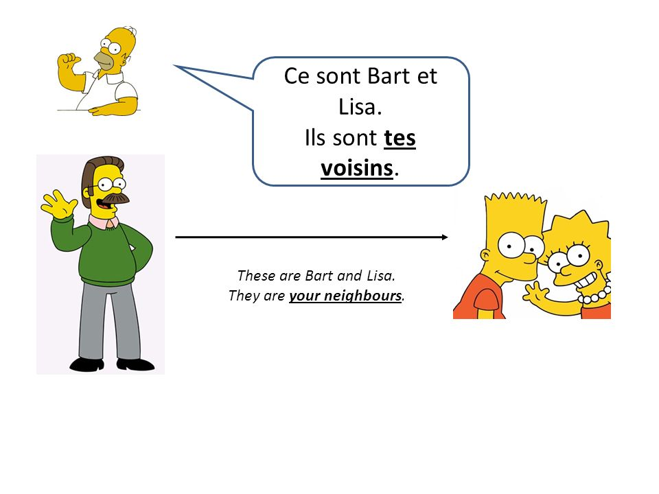 These are Bart and Lisa. They are your neighbours. Ce sont Bart et Lisa. Ils sont tes voisins.