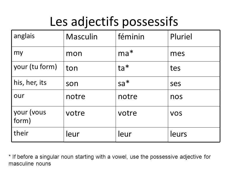 Les adjectifs possessifs nosnotre our leursleur their vosvotre your (vous form) sessa*son his, her, its testa*ton your (tu form) mesma*mon my PlurielfémininMasculin anglais * If before a singular noun starting with a vowel, use the possessive adjective for masculine nouns