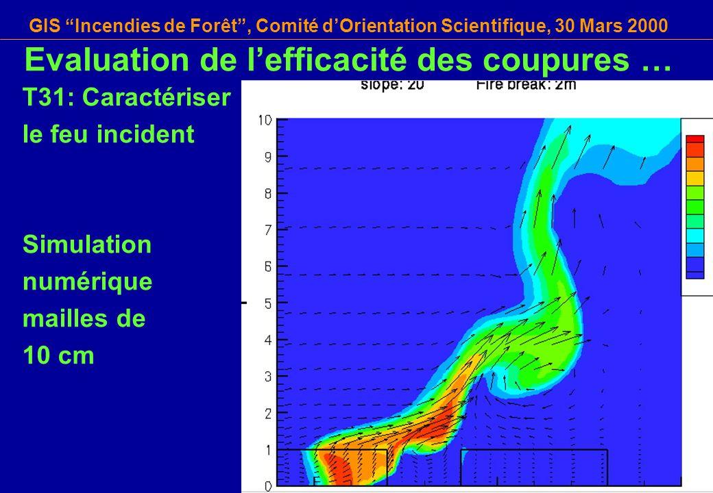 GIS Incendies de Forêt, Comité dOrientation Scientifique, 30 Mars 2000 T31: Caractériser le feu incident Simulation numérique mailles de 10 cm Evaluat