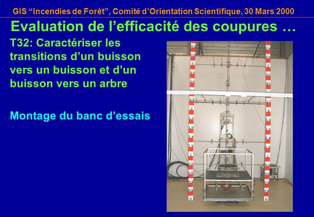 GIS Incendies de Forêt, Comité dOrientation Scientifique, 30 Mars 2000 T32: Caractériser les transitions dun buisson vers un buisson et dun buisson ve