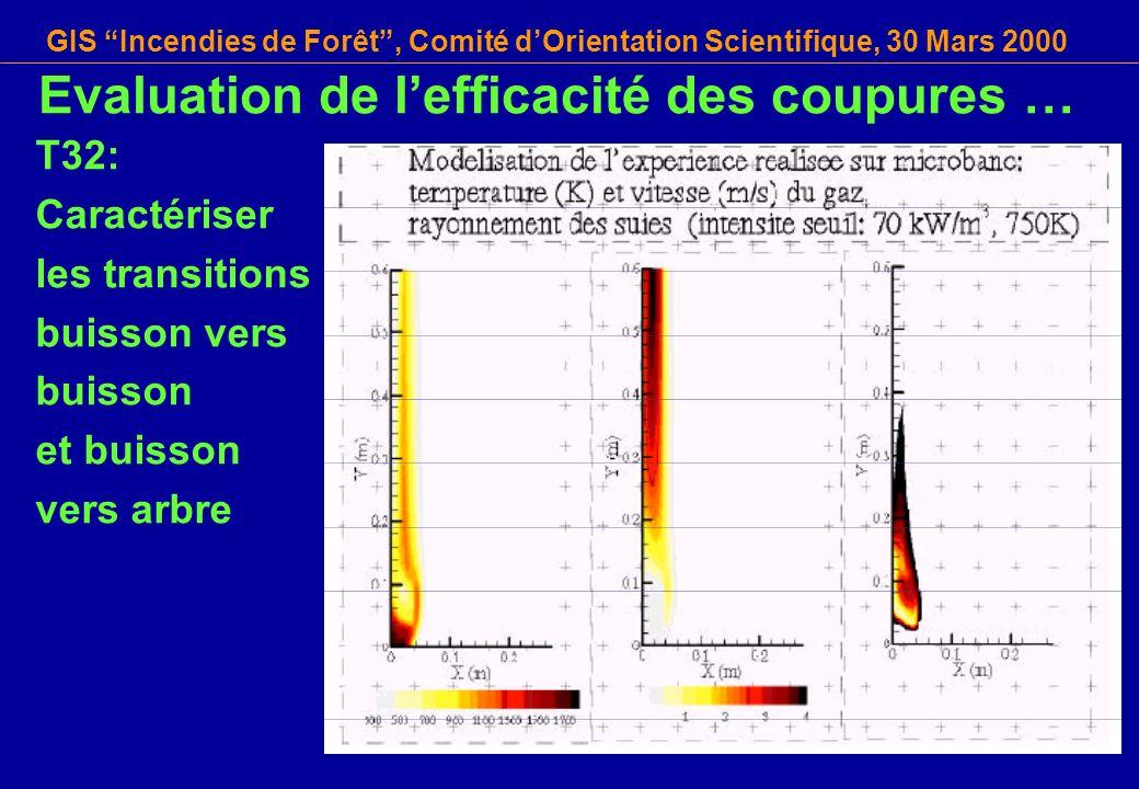 GIS Incendies de Forêt, Comité dOrientation Scientifique, 30 Mars 2000 T32: Caractériser les transitions buisson vers buisson et buisson vers arbre Ev