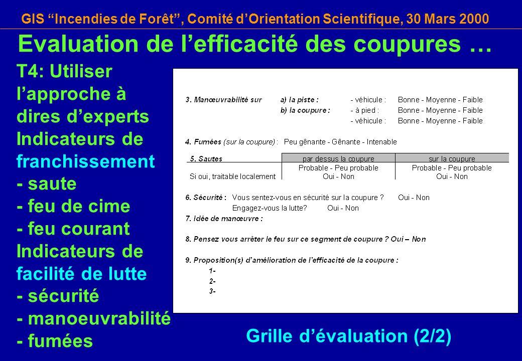 GIS Incendies de Forêt, Comité dOrientation Scientifique, 30 Mars 2000 T4: Utiliser lapproche à dires dexperts Indicateurs de franchissement - saute -