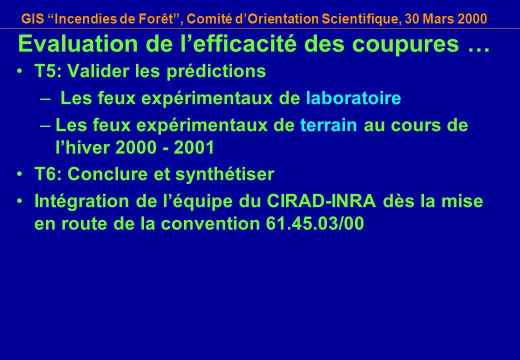 GIS Incendies de Forêt, Comité dOrientation Scientifique, 30 Mars 2000 T5: Valider les prédictions – Les feux expérimentaux de laboratoire –Les feux e
