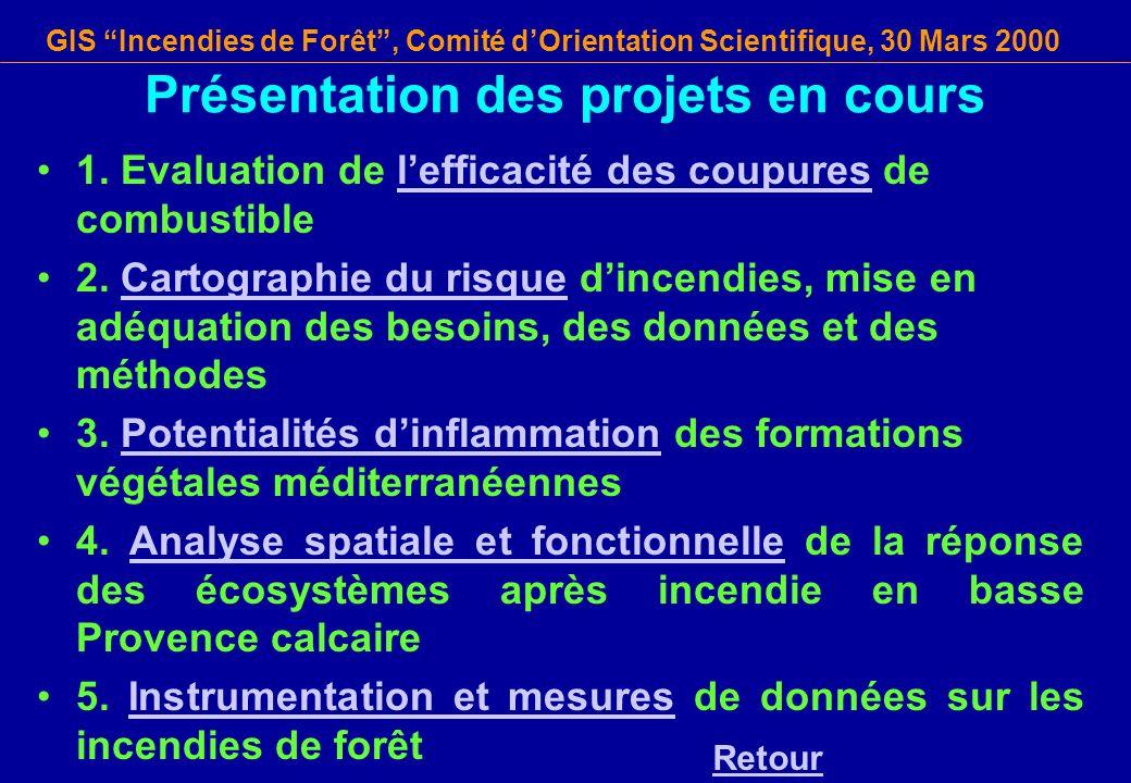 GIS Incendies de Forêt, Comité dOrientation Scientifique, 30 Mars 2000 Présentation des projets en cours 1. Evaluation de lefficacité des coupures de