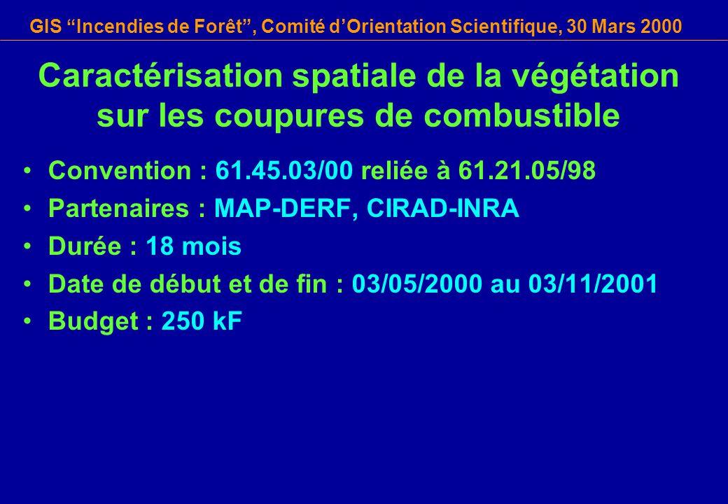 GIS Incendies de Forêt, Comité dOrientation Scientifique, 30 Mars 2000 Convention : 61.45.03/00 reliée à 61.21.05/98 Partenaires : MAP-DERF, CIRAD-INR