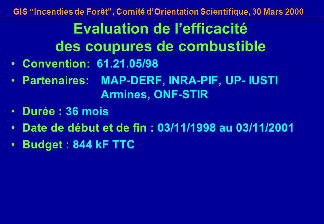 GIS Incendies de Forêt, Comité dOrientation Scientifique, 30 Mars 2000 Convention: 61.21.05/98 Partenaires: MAP-DERF, INRA-PIF, UP- IUSTI Armines, ONF