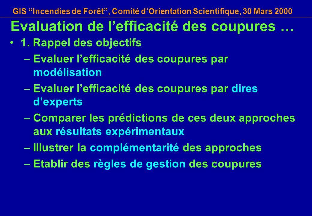 GIS Incendies de Forêt, Comité dOrientation Scientifique, 30 Mars 2000 1. Rappel des objectifs –Evaluer lefficacité des coupures par modélisation –Eva