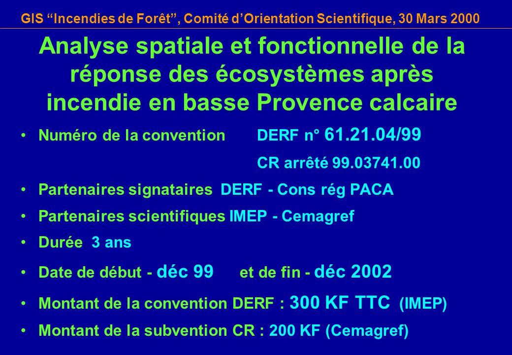 GIS Incendies de Forêt, Comité dOrientation Scientifique, 30 Mars 2000 Analyse spatiale et fonctionnelle de la réponse des écosystèmes après incendie