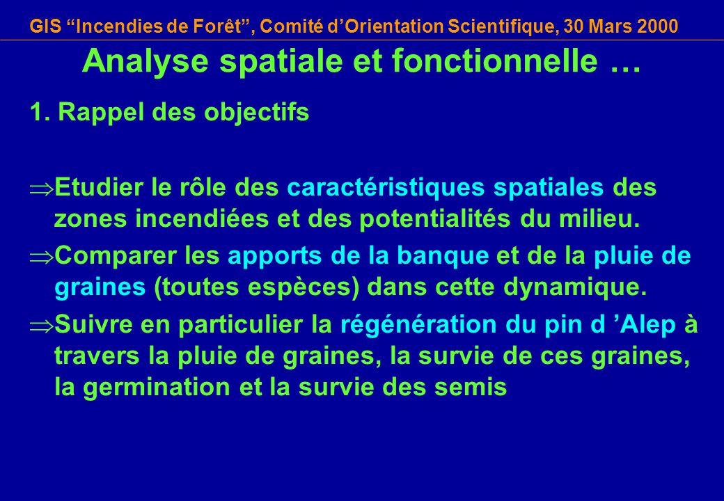 GIS Incendies de Forêt, Comité dOrientation Scientifique, 30 Mars 2000 Analyse spatiale et fonctionnelle … 1. Rappel des objectifs Etudier le rôle des