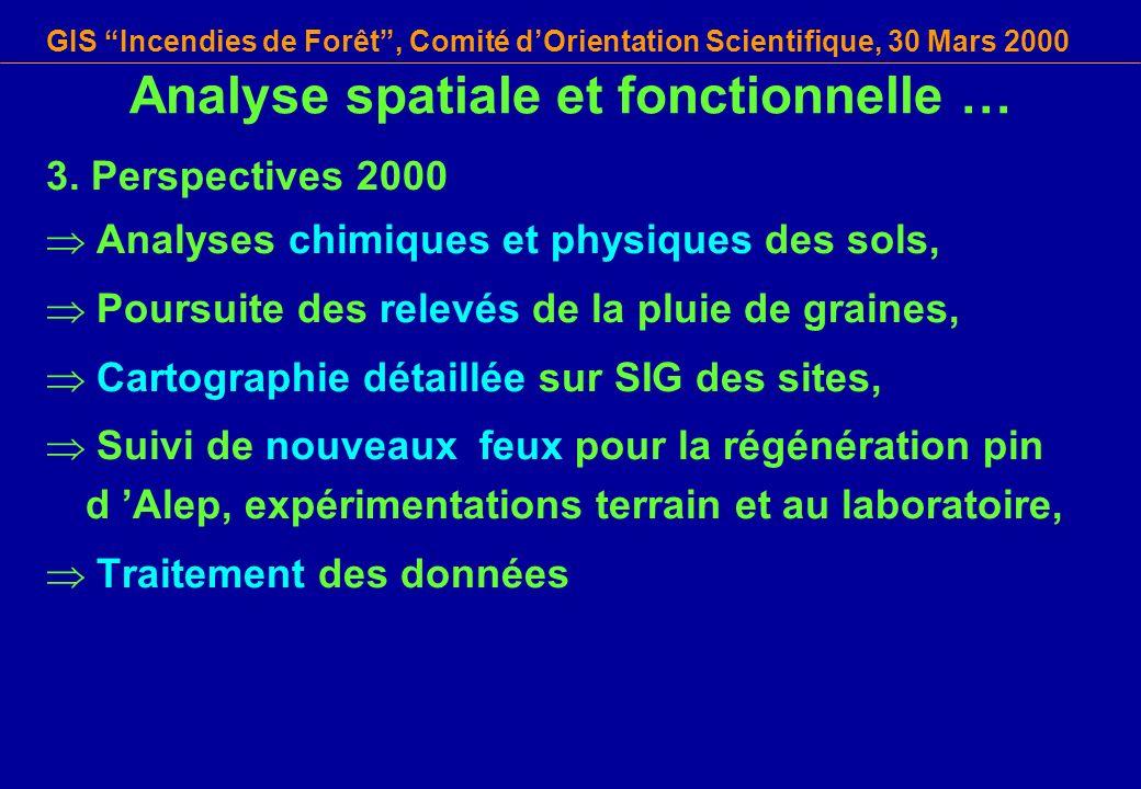 GIS Incendies de Forêt, Comité dOrientation Scientifique, 30 Mars 2000 Analyse spatiale et fonctionnelle … 3. Perspectives 2000 Analyses chimiques et