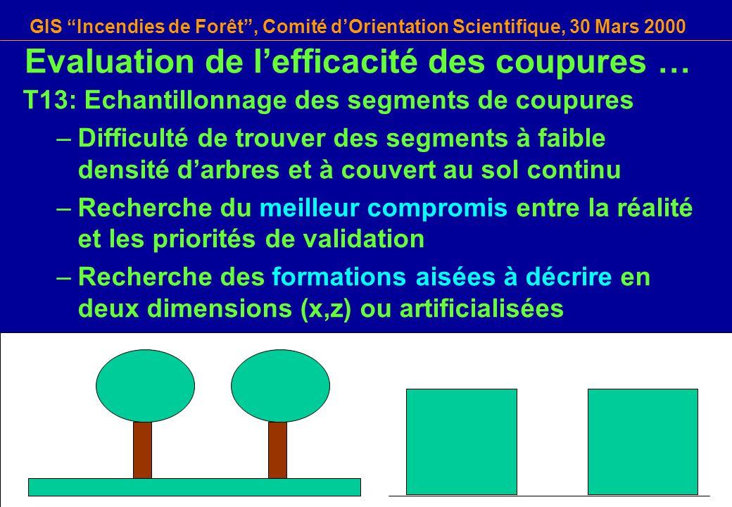 GIS Incendies de Forêt, Comité dOrientation Scientifique, 30 Mars 2000 T13: Echantillonnage des segments de coupures –Difficulté de trouver des segmen