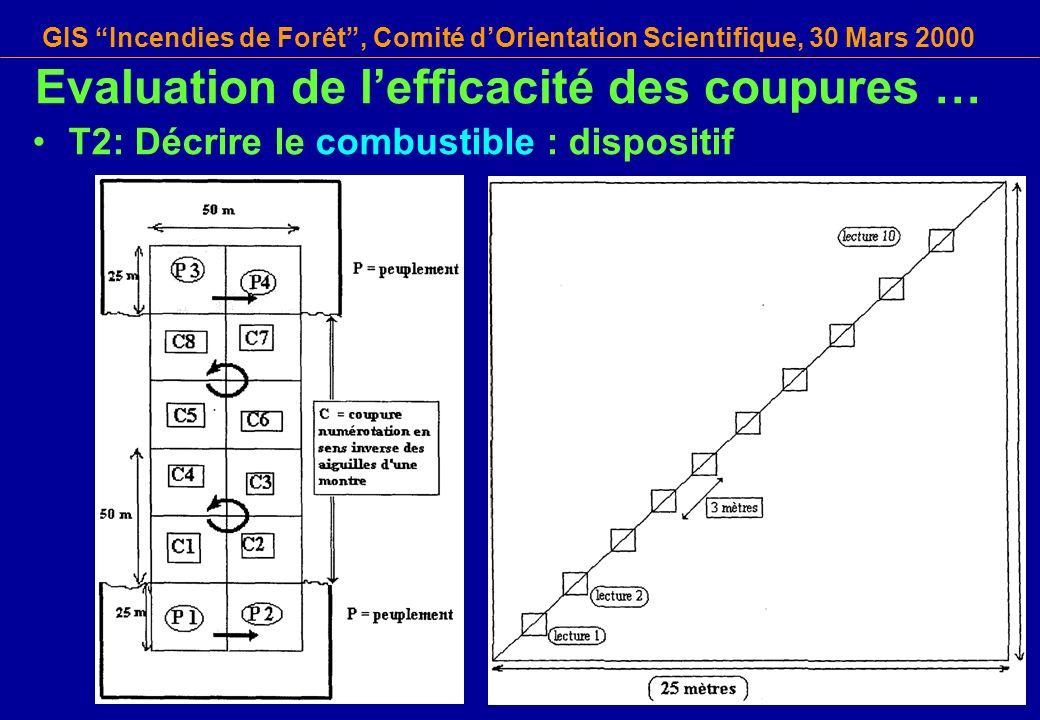 GIS Incendies de Forêt, Comité dOrientation Scientifique, 30 Mars 2000 T2: Décrire le combustible : dispositif Evaluation de lefficacité des coupures