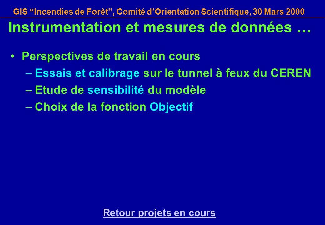 GIS Incendies de Forêt, Comité dOrientation Scientifique, 30 Mars 2000 Instrumentation et mesures de données … Perspectives de travail en cours –Essai