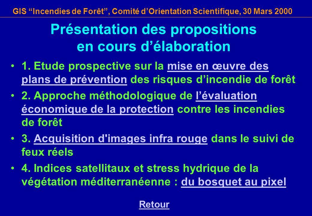GIS Incendies de Forêt, Comité dOrientation Scientifique, 30 Mars 2000 Présentation des propositions en cours délaboration 1. Etude prospective sur la