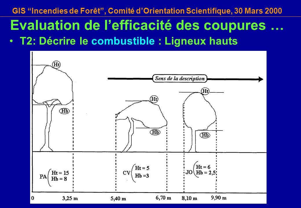 GIS Incendies de Forêt, Comité dOrientation Scientifique, 30 Mars 2000 T2: Décrire le combustible : Ligneux hauts Evaluation de lefficacité des coupur