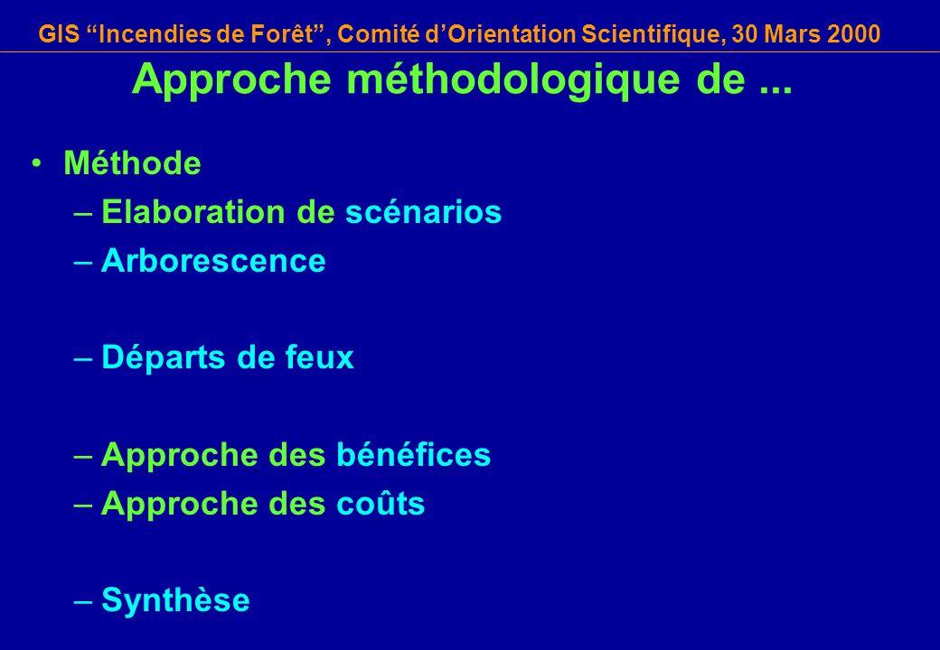 GIS Incendies de Forêt, Comité dOrientation Scientifique, 30 Mars 2000 Approche méthodologique de... Méthode –Elaboration de scénarios –Arborescence –