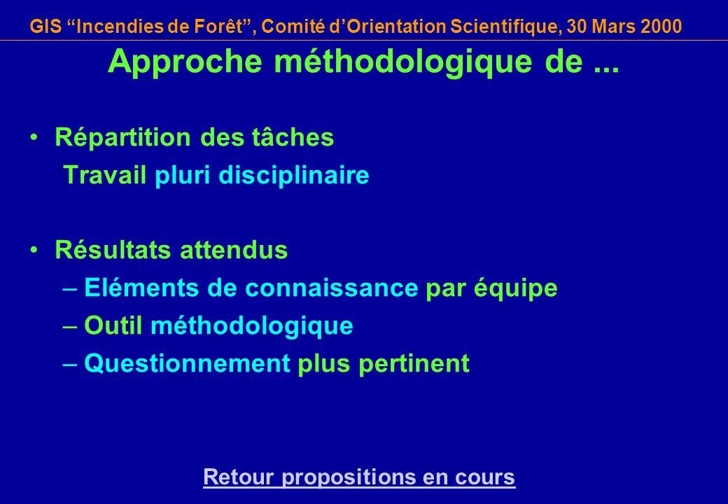 GIS Incendies de Forêt, Comité dOrientation Scientifique, 30 Mars 2000 Approche méthodologique de... Répartition des tâches Travail pluri disciplinair