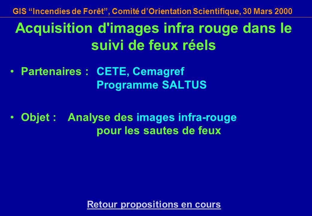 GIS Incendies de Forêt, Comité dOrientation Scientifique, 30 Mars 2000 Acquisition d'images infra rouge dans le suivi de feux réels Partenaires : CETE