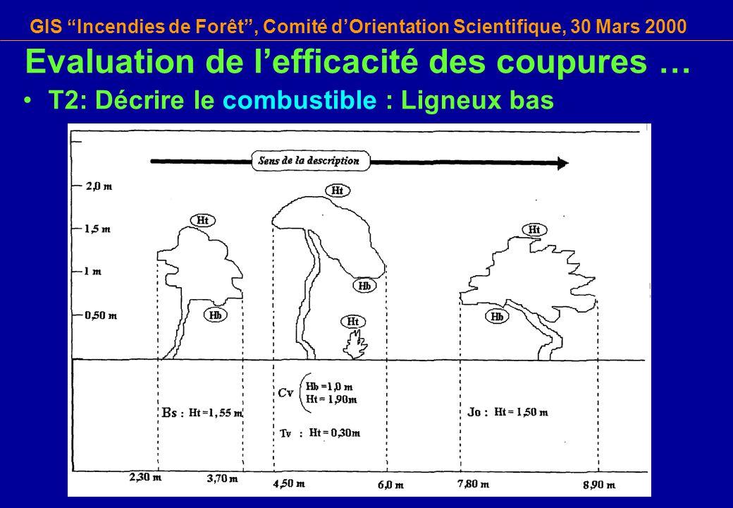 GIS Incendies de Forêt, Comité dOrientation Scientifique, 30 Mars 2000 T2: Décrire le combustible : Ligneux bas Evaluation de lefficacité des coupures
