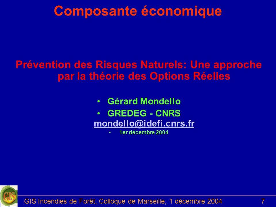 GIS Incendies de Forêt, Colloque de Marseille, 1 décembre 20047 Composante économique Prévention des Risques Naturels: Une approche par la théorie des