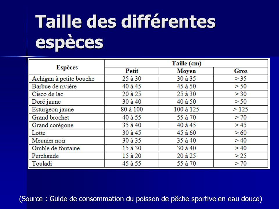 Taille des différentes espèces (Source : Guide de consommation du poisson de pêche sportive en eau douce)