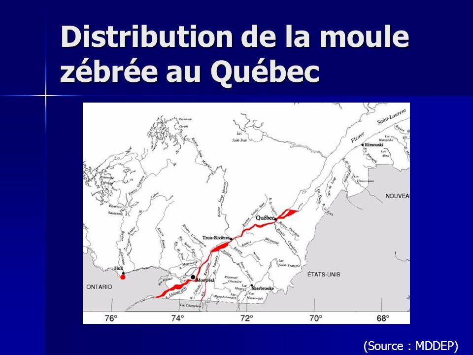 Distribution de la moule zébrée au Québec (Source : MDDEP)